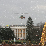 White-House-National-christmas-tree-Marine-One-ecard